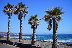 Playa de las Americas - Ausblick von der Promenade